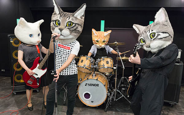 band-cat-heads