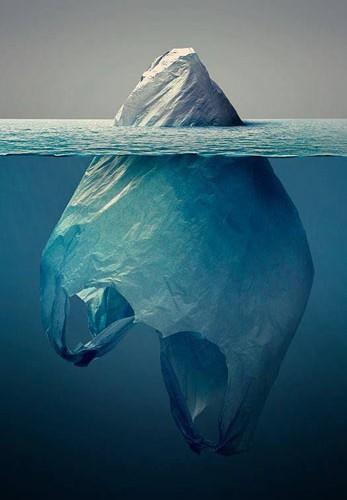 ice-bag
